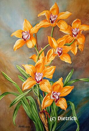 lorraine p dietrich artiste site officiel orchid es orchids. Black Bedroom Furniture Sets. Home Design Ideas